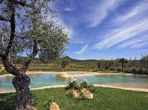 vendita piscine naturali